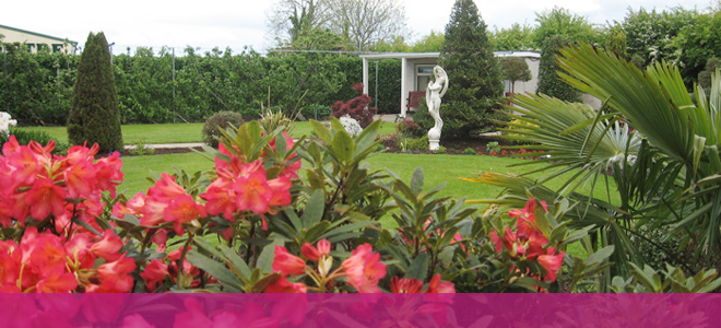 Landscaping and Consultancy Service - Carndonagh Nursery and Garden Centre
